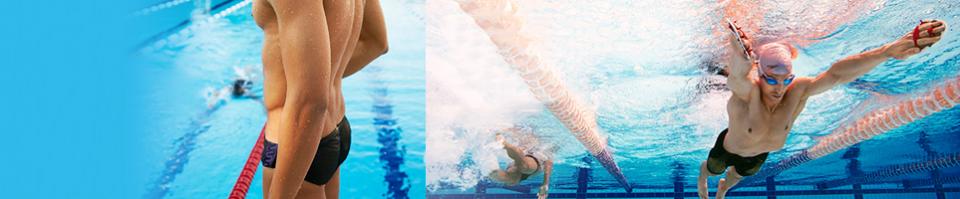 Quần bơi nam speedo